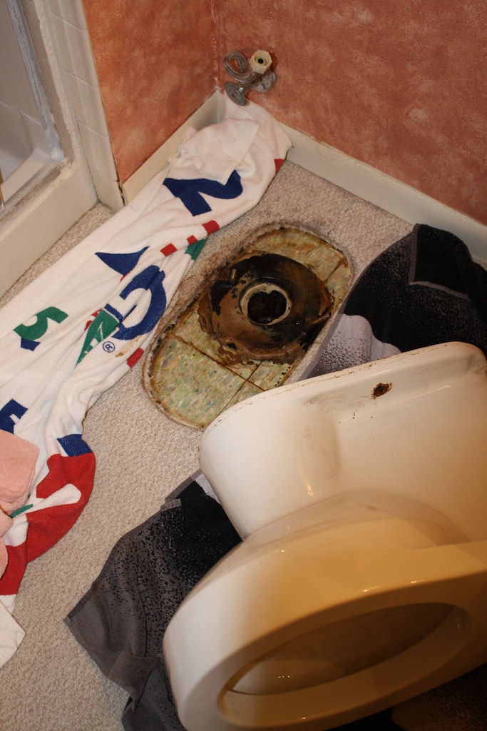Toilet Repair Sept 2010 - 4