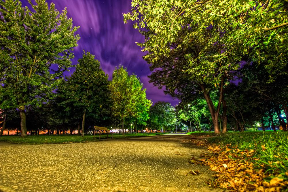 Violet Sky