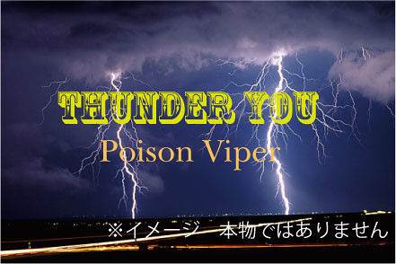 Thunder You Logo