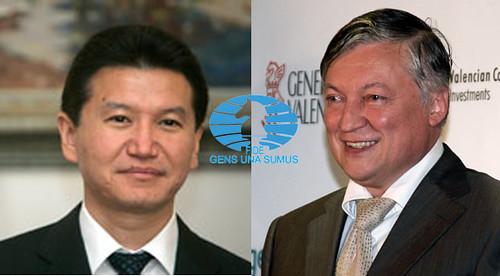 Elecciones FIDE 2010