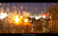 Clash of the Titans (Bokeh War) (shakerk) Tags: anime freedom war bokeh seed clash explore destiny strike kira gundam asuka titans mecha impulse dragoon gundamseeddestiny shinn gundams zgmfx56simpulse zgmfx20astrikefreedom yamatao