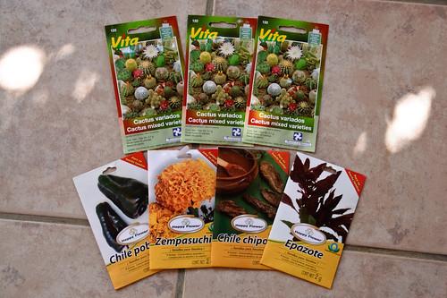my garden 0072 October 01, 2010