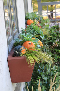 From http://www.flickr.com/photos/54197467@N05/5040588120/: Fall Windowboxes