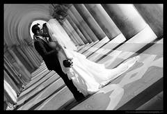 PHOTOGRAPHE MARIAGE : A kiss, Plaza San marco (Sebastien LABAN) (Sebastien LABAN) Tags: photographemariage photographemariagecannes photographemariagelyon photographemariagephotographemariagevarphotographemariagelyonphotographemariagecannesphotographemariagesaintraphaelphotographemariagealpesmaritimesphotographemariagerhonealpesphotographemariagemonacophotographemariageantibes photographemariagevar photographemariagesaintraphael photographemariagealpesmaritimes photographemariagerhonealpes photographemariagemonaco photographemariageantibes