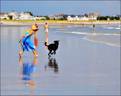 A Day at the Beach (blamstur) Tags: ocean blue dog playing reflection beach water colorful surf maine oldorchardbeach 15challengeswinner