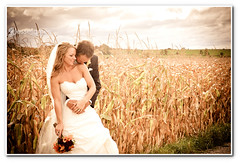 Joanna and Ryan! (Jesse James Photography) Tags: wedding woman love field groom bride cornfield nikon pretty marriage strobist d700