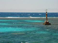 Riff bei El Gouna, NGIDn1070549825 (naturgucker.de) Tags: elgouna gypten naturguckerde cchristophbausch ngidn1070549825
