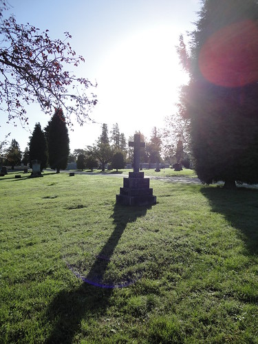 Sunlight in the graveyard