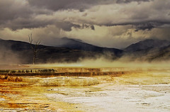 hot Springs (Ravi Pinisetti) Tags: nature nationalpark mammoth ravi yellowstone pse hotsprings mammothhotsprings 500d upperterrace rkp canont1i pinisetti