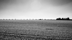 lonely farmer... (mhg~) Tags: bw field traktor farmer wrzburg olypen versbach kitzoom