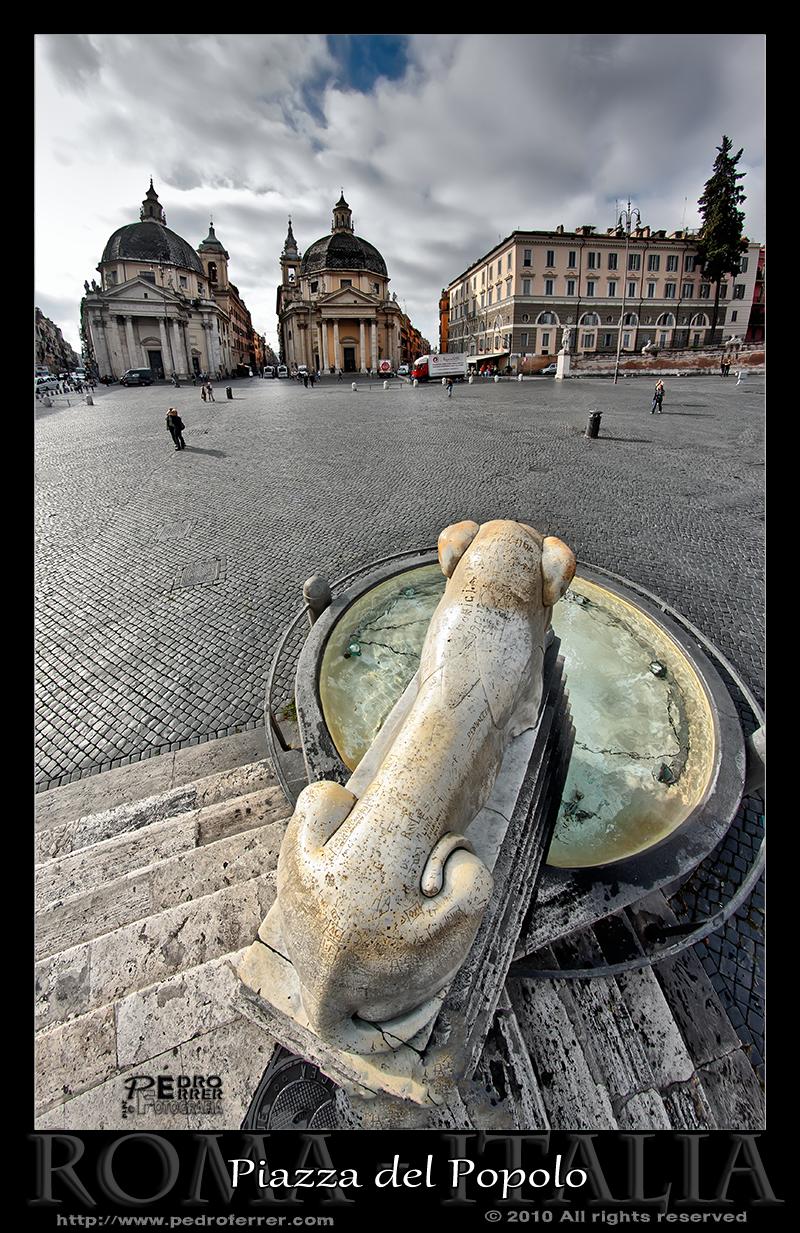 Roma - Piazza del Popolo - Acechando al león