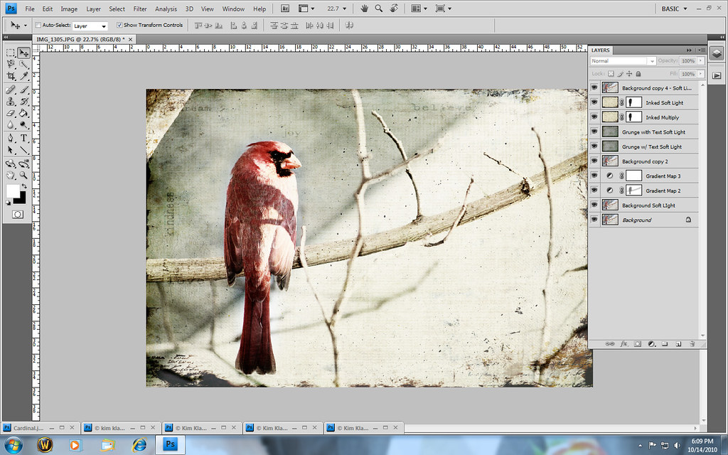 CardinalPhotoshopScreen