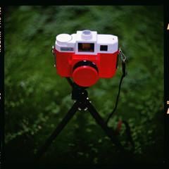 sold (19/77) Tags: slr film holga malaysia 1977 negativescan kiev88 holga120cfn mediumfromat kodakektacolorpro160 autaut canoscan8800f arsat80mmf28 holgajack myasin