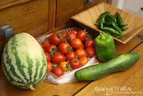 280-last harvest