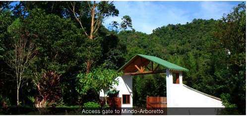Mindo-gated-community