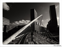 Bilbao Puente de Calatrava (Davide Cherubini) Tags: bridge blackandwhite blancoynegro puente spain bilbao ponte espana calatrava architettura biancoenero spagna arquitecture zubizuri cherubini dcherubini davidecherubini