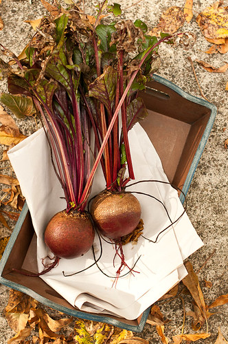 fresh beets in tray