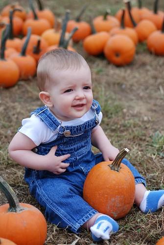 Pumpkin Posing