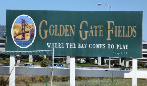 golden gate fields 085
