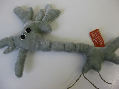 5 nov2010 brain cell plush