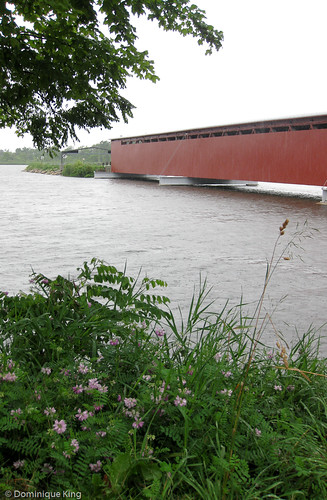 Langley Covered Bridge-Michigan-2