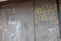 Herts Amuse Mole (EMENFUCKOS) Tags: chicago de graffiti mole mul abk amuse herts kwt 2nr