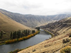 Yakima Canyon (Stones 55) Tags: autumn fall river washington unitedstates canyon northamerica geology kittitascounty basalt canyonroad geomorphology columbiaplateau entrenchedmeander watergap yakimariver yakimacanyon nationalnaturallandmark nnl stateroute821 columbiariverbasaltgroup entrenchedriver yakimafoldbelt antecedentstreamcutting antecedentstream tectonicfolding umtanumridgewatergap