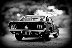 American Muscle II (tamahaji) Tags: black ford rear 1967 series greenlight mustang gt bandit coupe 118 holgaish