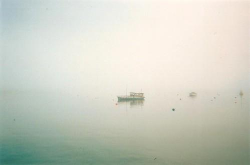 Fal fog