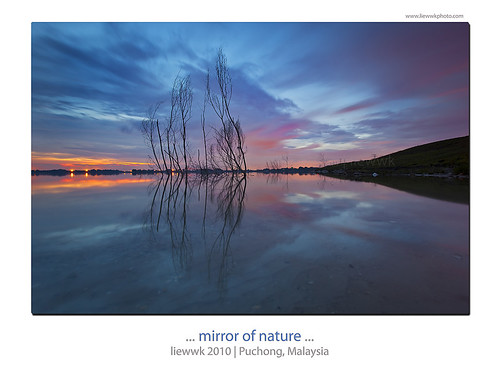 ... mirror of nature ...