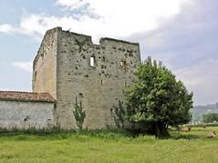 Torren de Trubia /Torruxn de Trubia (Siglo XIV  XV) (Julio G.Gonzlez) Tags: espaa gijn asturias trubia