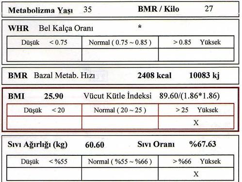 vücut oranları bölgesel