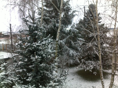 la prima neve del 2010