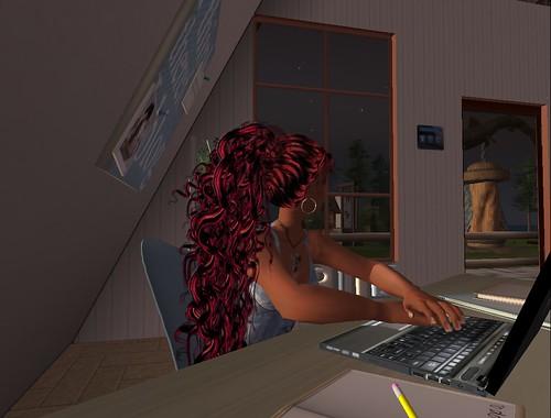 nara_laptop