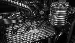 Ford Flathead V8 Engine ©2017 Steven Karp (kartofish) Tags: ford flathead hotrod alluminum chrome monochrome blackandwhite fujifilm xt2 v8 engine carshow doylestown fonthill halibrand metal edelbrock vintagemotorcar