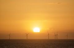 Golden Age of Wind (silverwine) Tags: wind windfarm alternativepower windturbines sunset renewableenergy energy sea