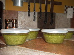 Pesto Freezer