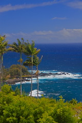 Big Island coast, Hawaii