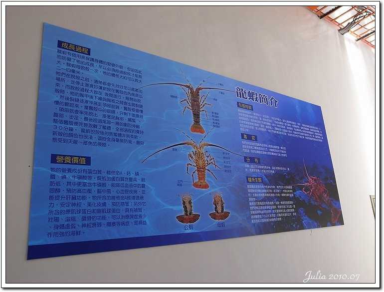 金車鮮蝦 (9)
