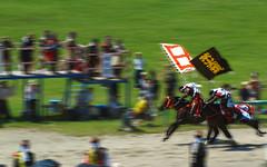 1/1000 of a second (TheTownSheriff) Tags: horse samurai soma fukushima nomaoi