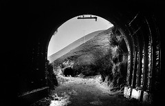 Drung Hill tunnels, Co Kerry, Ireland (2c..) Tags: ireland summer sky bw abandoned landscape railway kerry railways 2c nikormat abandonedrailways 72dpipreview lowresolutionpreview