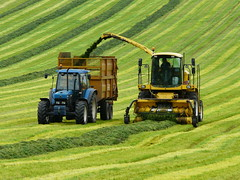 P1350994 Silage Harvesting (SomeBlokeTakingPhotos) Tags: summer tractor landscape countryside stripes derbyshire peakdistrict silage harvesting thegalaxy silageharvester mygearandme mygearandmepremium mygearandmebronze mygearandmesilver mygearandmegold rememberthatmomentlevel1 rememberthatmomentlevel2