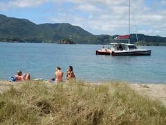 Urupukapuka Bay beach stop