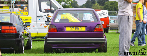 purple golf