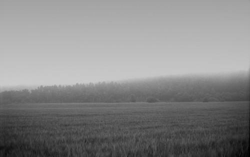 Rain on silence
