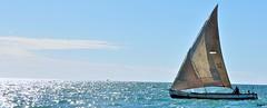 ny lakantsika... (Jaytaxx) Tags: nikon nikkor bateau madagascar sambo d90 lakana grandpavois jaytaxx
