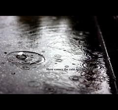 Falling on my head like a memory, Falling on my head like a new emotion. (*karla) Tags: rain canon 50mm dof