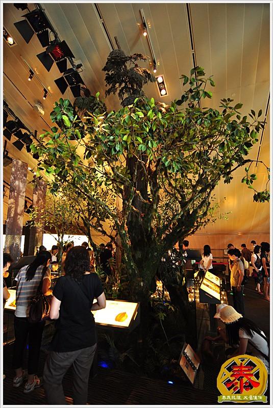 蘭陽博物館a (13)