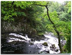 SWALLOW FALLS... (vicki127.) Tags: trees friends green water wales photoshop waterfall rocks greatshot betwsycoed twop youmademyday flickraward concordians ilovemypics vickiburrows