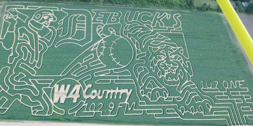 DeBuck's Corn Maze and Pumpkin Patch - Belleville, Michigan